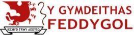 Y Gymdeithas Feddygol